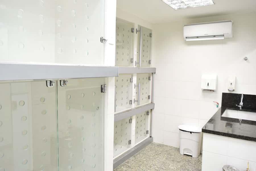 Internações com alojamentos de diversos tamanhos, em epóxi e vidro, adequadamente ambientados, separadas para cães, gatos e doenças infecciosas.